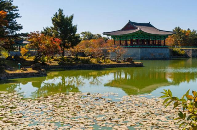 3-day-tour-from-seoul-gyeongju-and-busan-in-seoul-125416